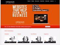 Website Development / Project Manager