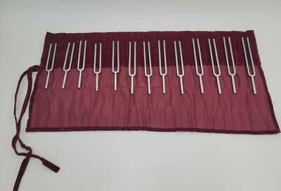 Set of 13 Steel Tuning Fork with Velvet Pouch and Mallet