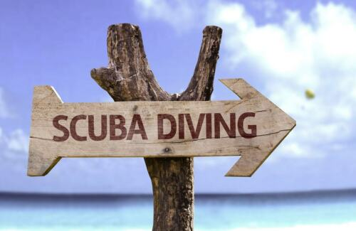 PADI RESCUE DIVER ELEARNING ONLINE CLASS YOU SAVE $43.00