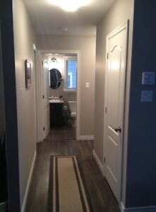 Extremely Well Kept Clean Cozy 2 Bedroom in Paradise - $1150 St. John's Newfoundland image 4