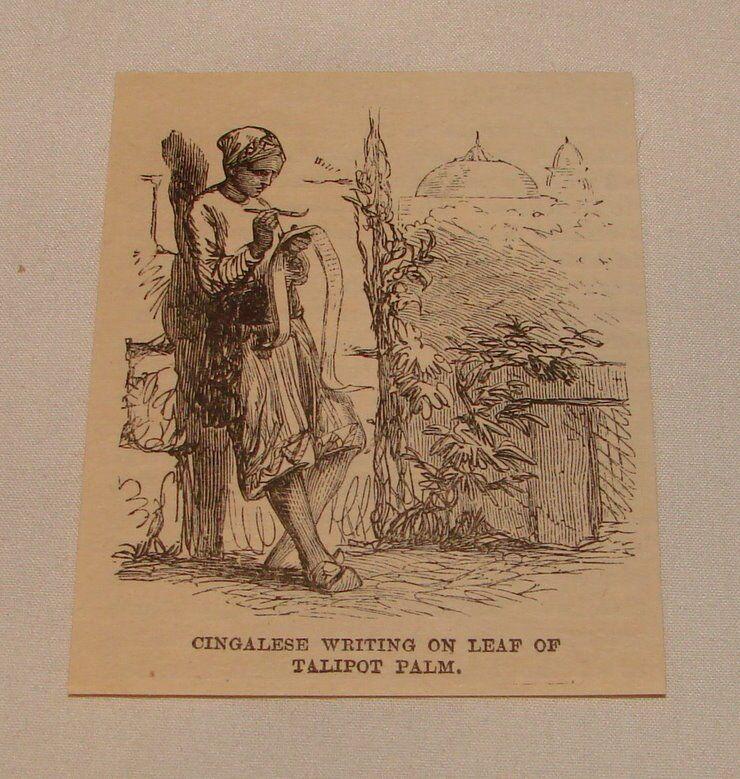 1887 small magazine engraving ~ CINGALESE WRITING, Sri Lanka