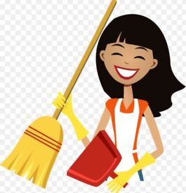 Experianced domestic cleaner - Midlothian