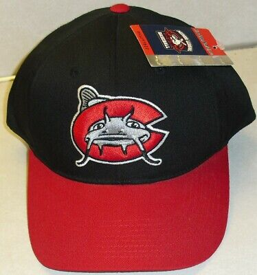 newest 4df4e cc5d6 Carolina Mudcats Minor League Baseball Vintage 90s Snapback hat -New with  Tags!-