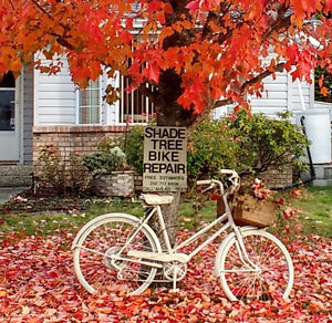 SPECIAL OFF - SEASON RATES TO GET YOUR BIKE REPAIRED FOR LESS