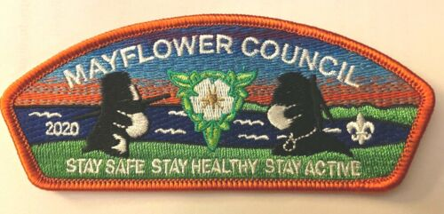"Mayflower Council CSP ... ""Stay Safe ... Stay Healthy ... Stay Active""  (SA-18)"