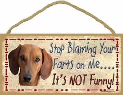 Dachshund Stop Blaming Your Farts on Me It's Not Funny Wood Dog Sign USA Made for sale  Cape Coral
