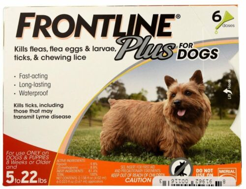 FRONTLINE Plus for Small Dogs 5-22 lbs. Orange Box 6 Month Supply - EPA Approved