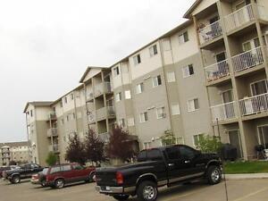 Great Location - 2 Bdrm Apartment -  5 Appliances Edmonton Edmonton Area image 2
