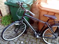 Superb Ridgeback new bike
