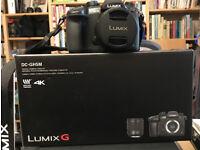Lumix Panasonic DC-GH5 Compact System Camera