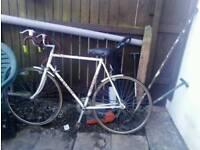 Old racing bike