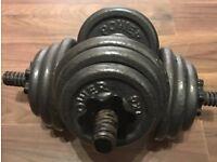 Dumbbell Set: 18kg