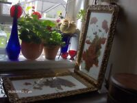 2 oil painting ,19th still life oil painting with gold frames