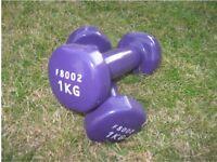 1 Pair of Ladies Lightweight Dumbbells, 1.0kg per Dumbbell / 2.0kg per Pair, Purple
