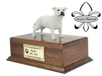 Luxury Solid Wood Mahogany Urn, pet, dog, ashes, memorial,, Staffordshire