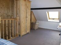 Large room in shared house with en suite shower - £320/month (inclusive)