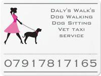Fully insured Dog Walker Cambuslang