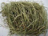 Good fresh hay