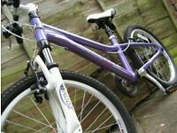 "Impeccable Condition Girls Mountain Bike 20"" Wheels Similar to Specialized Hotrock and Carrera Luna"