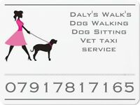 Fully insured dog walker