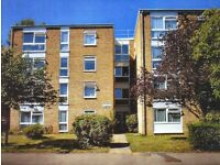 Bright Two Bedroom Flat to Rent in South Sutton