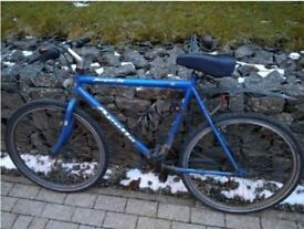 Bike! Fine 26' Apollo Mountain Bike for male with full equipment set(lock helmet...)