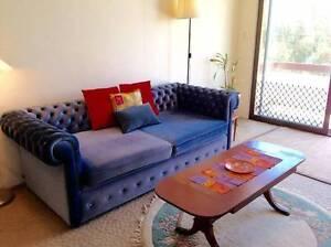 Couch in beautiful blue velvet Bondi Eastern Suburbs Preview