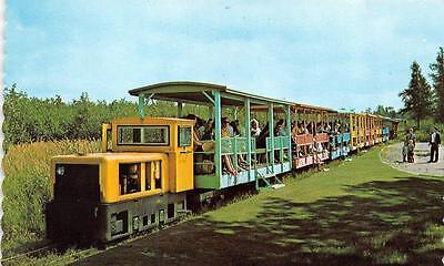 Michigan Trolley (MI, Michigan    TOONERVILLE TROLLEY TRAIN  Soo Junction    Roadside Postcard)