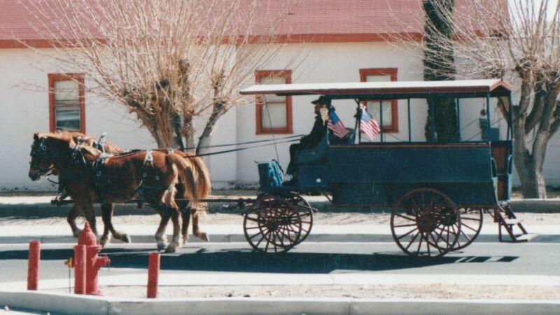 Custom built depot wagon (wagonette) 10 passenger Horse Drawn Carriages