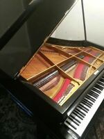 Piano Baby Grand , BECHSTEIN GRAND , 6 ft 8 inch Like New