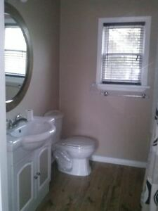 1 Bedroom Cottage for Rent on Belmont Lake (Furnished Optional) Peterborough Peterborough Area image 5