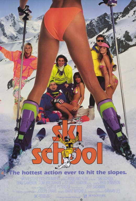 SKI SCHOOL Movie POSTER 27x40 Ava Fabian Dean Cameron Tom Breznahan Stuart