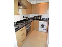 Double room available now in oval