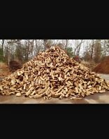 Firewood For Sale: Wesley Banks Woodcutting