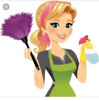 Home, office and commercial cleaning lady available