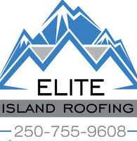 Professional roofing applicator
