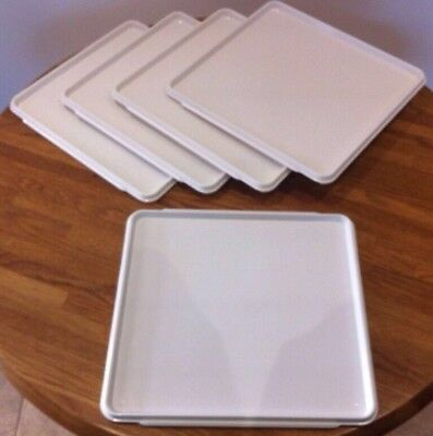 AIRWAYS INFLIGHT PLASTIC TRAYS IDEAL FOR PARTYS,BUTCHERS,BAKERS,CAFES,RESTAURANT