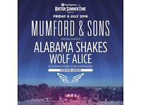 Mumford and Sons Hyde Park Festival Ticket x1