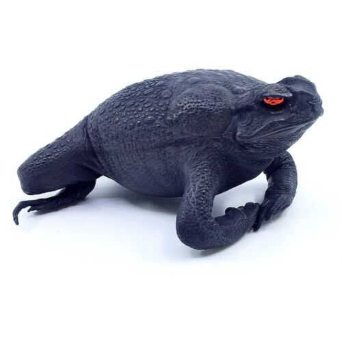 New Exotic Genuine Bufo Marinus Taxidermied Lucky Cane Toad Gothic Black 4.5""