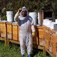 Beekeeper Required