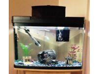 LoveFish Panorama Fish Tank £60