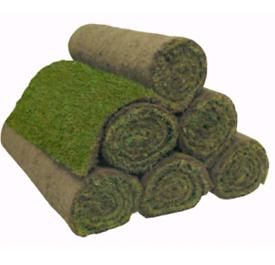 Rolawn turf lawn roll 13 rolls FREE