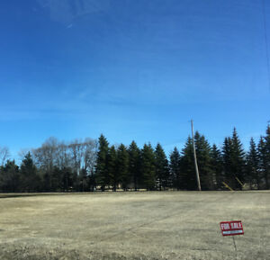 2 Ready to Build on Lots fpr Sale in Woodlands, MB.