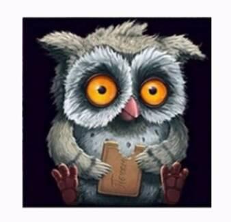 Owl DIY 5D Embroidery Diamond Sticker Cross Stitch Painting - NEW