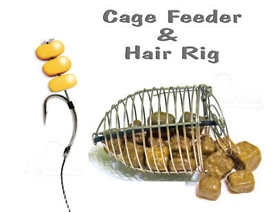 Carp Cage Fishing Bait Feeder Method Hair Rig Hook #4 Coarse Fishing Tackle