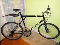 Gt Palomar Triple Triangle City bike