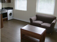 One bedroom flat for rent - Available 1st Jan: £600pcm - Next to uni, 5 min from city centre