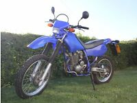 Yamaha TTR 250 - 2004 model - Ultra Low Mileage!!!
