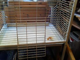 Large bird cage with food bowls no perches.