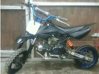 Pit bike 125cc with brand new engine fitted ideal Christmas present
